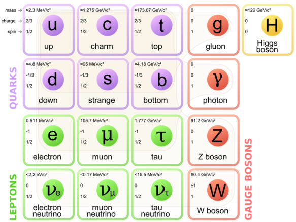 Standard_Model_of_Elementary_Particles.svg.0